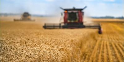 Secretário Adjunto do Ministério de Agricultura, José Angelo comenta sobre os desafios e projeções para o setor do Agronegócio.