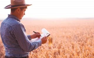 Como funciona o seguro de Cédula de Produto Rural