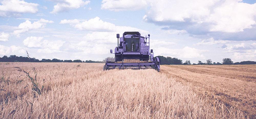 Trator no campo de trigo.