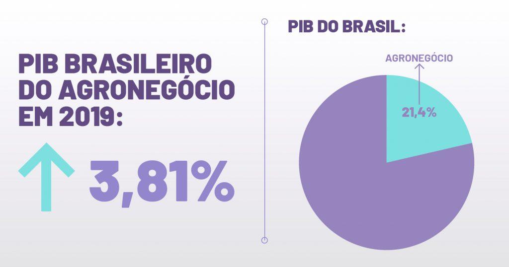PIB brasileiro do agronegócio cresce 3,81% em 2019 | Docket - Blog